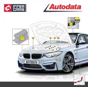 INTER CARS LIETUVA - oficialus AUTODATA platintojas Lietuvoje