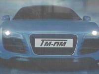 Zakład Handlowo-Usługowy TM-AM SERVICE Tomasz Malarz