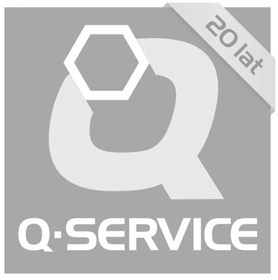 Q-Service_logotyp_jasnoszary.jpg
