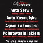 CITY-CARS AUTO SERWIS & AUTO SPA ŁUKASZ MROZEK