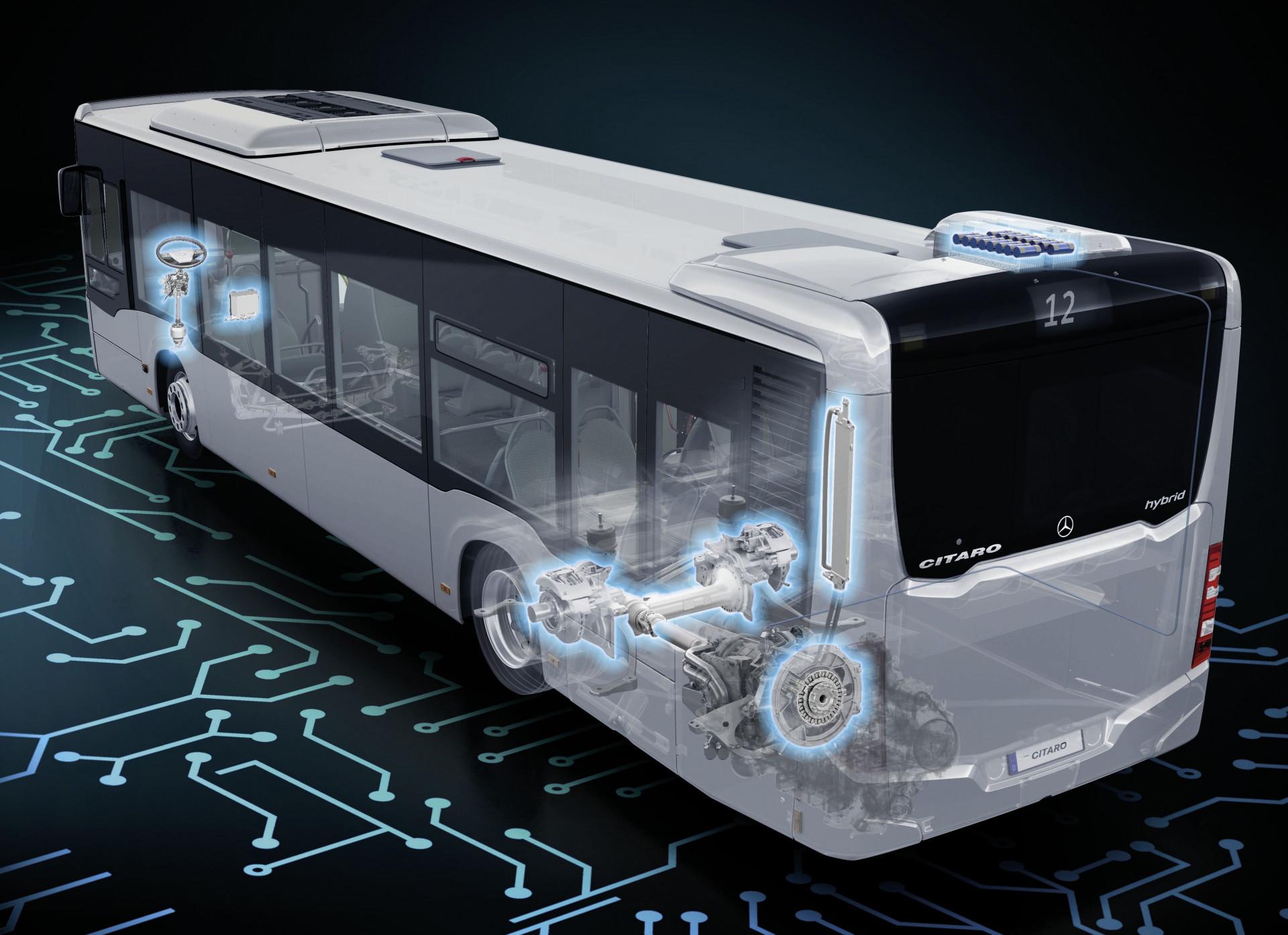 Autobusy_06.jpg