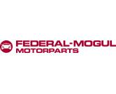 dookolaswiata-federalmogul