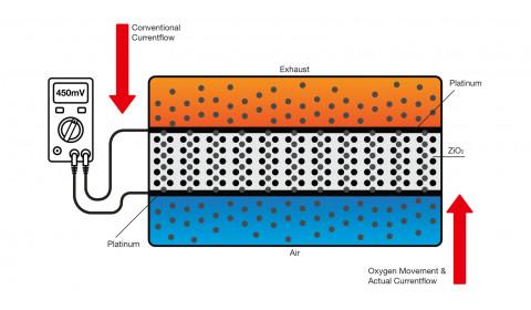 5 laidų deguonies davikliai