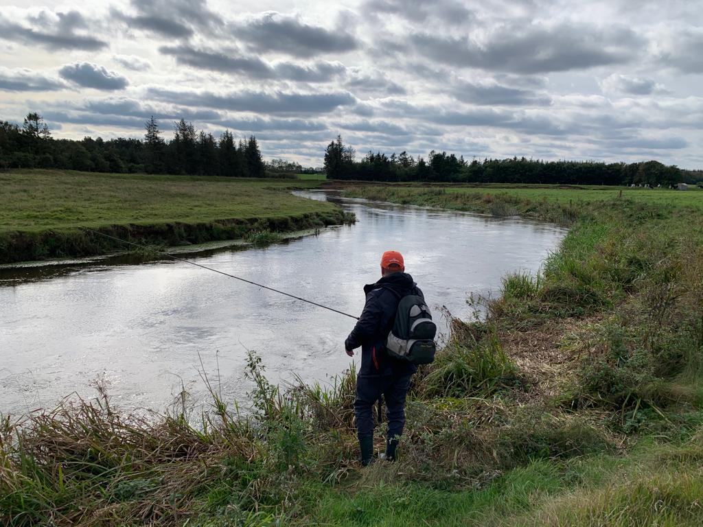 Rzeka Skjern.jpg