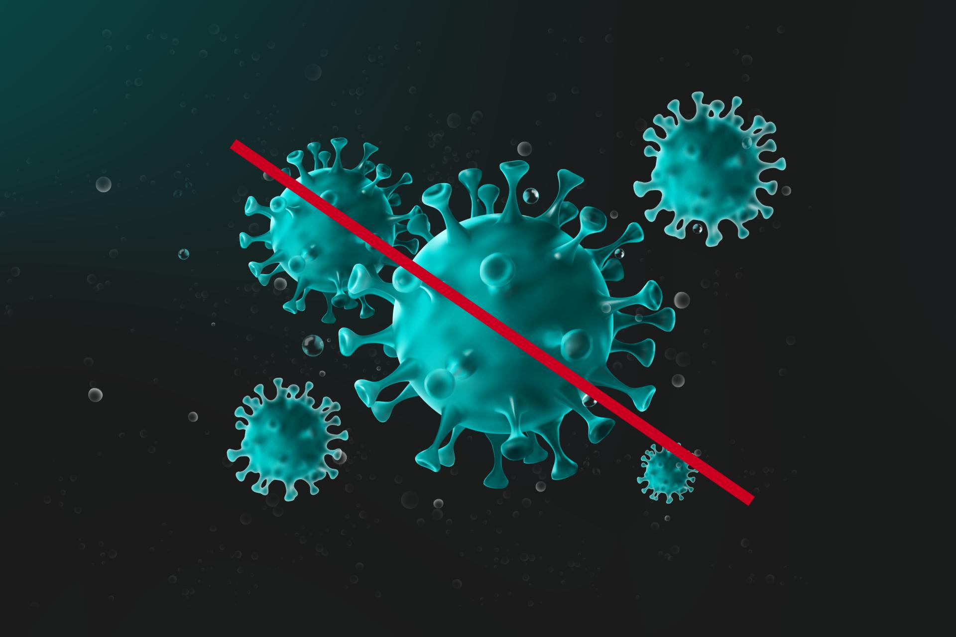 wirus zdjęcie.png