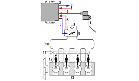 Układy wtrysku benzyny typu wielopunktowego, bezpośredniego